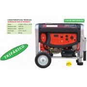 GENERADOR BASIC TRIFASICO SRG 6500 DS