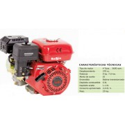 MOTOR BASIC 4T 9HP 270CC