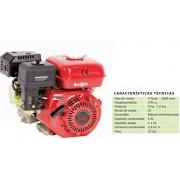 MOTOR BASIC 4T 9 HP 270CC SR 177-FG